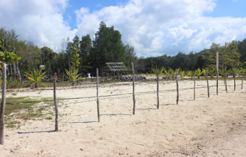 El Nido Palawan Beachfront