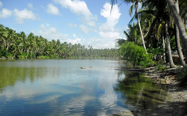 FOR JOINT VENTURE AND SALE: Beach Lot with Fish Pond