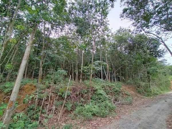 Agricultural Land For Sale At Desa Pinggiran Putra, Putrajaya