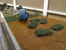 Khidmat Tebang,Trim,Potong Pokok, Tanam rumput