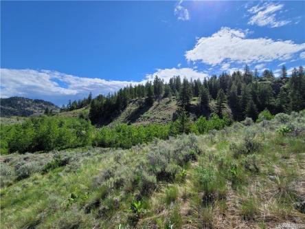 Fresh Mountain Air on 23+ Acres