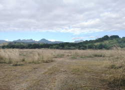 Vacant Lot in Floridablanca