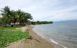 Beachfront/Agricultural Lot