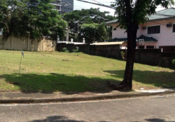 Lot For Sale in Muntinlupa