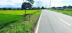 80 Hectares Lot in Gapan City