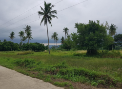 Farm Lot in Puerto Princesa (Close to the beach)