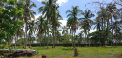 Commercial Lot for Sale in Batangas