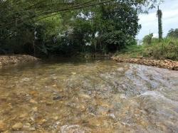 Agricultural Land For Sale At Ulu Yam, Batang Kali