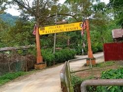 Agricultural Land For Sale At Kalumpang, Selangor