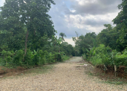 Farm Land For Sale in Cavite