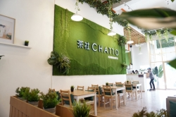 Chatto Handcrafted Tea Bar Franchise