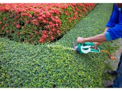 Landscaping and Maintenance Business