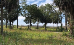 GULF FRONT LAND, STEINHATCHEE, FLORIDA - 4.30 acres