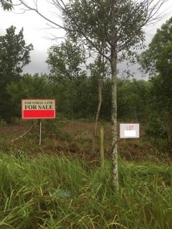 Industrial Land For Sale At Kundang Jaya Industrial Park, Taman Kundang Jaya