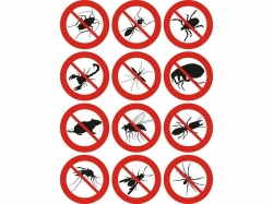 Termite and Pest Control Business For Sale