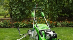 Landscape Maintenance Price Reduction