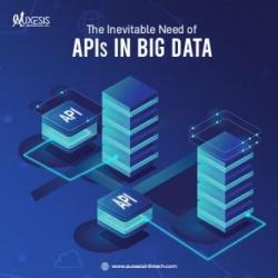 The Inevitable Need of APIs in Big Data