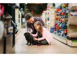 Established & Profitable Pet Store, St. Louis
