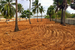 Land For Sale in South Therivilai