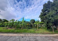 San Pedro Village Lot For Sale