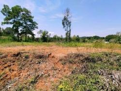 Agricultural Land For Sale At Kampung Abu Bakar Baginda, Sungai Merab