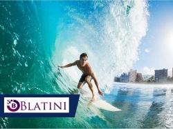 Established Surf Shop