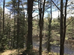 768 acres Adirondacks NY on Saranac River