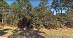 2 Lots for Sale in Georgetown, FL