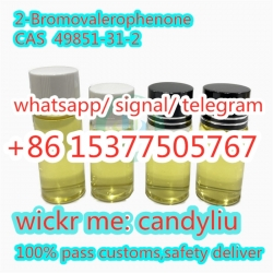 Supply 2-Bromovalerophenone cas 49851-31-2 to Kazakhstan