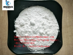 Hot Sodium Borohydride CAS 137141-62-9/China Factory/Safe Delivery