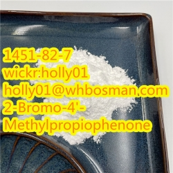 CAS 16648-44-5/1451-82-7/5413-05-8 2-Bromo-4'-Methylpropiophenone BMK/Pmk Glycidate Powder in Stock
