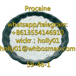 99% Good Quality Procaine CAS 59-46-1 Procaine Powder with Safe Delivery 51-05-8