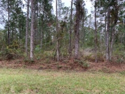 1Acre Land For Sale